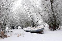 Winter boat (radimersky) Tags: turawa boat łódka lake jezioro turawskie polska poland day dzień winter zima frozen zamarznięte outdoor landscape krajobraz widok drzewa trees snow śnieg dmclx100 panasonic lumix 43 micro fourthirds opolskie europa europe white biało gimp 3840x2560 brzeg krzaki