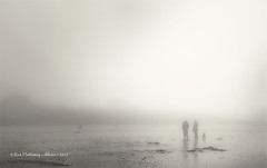 a foggy doggy conversation (rhfo2o - rick hathaway photography) Tags: rhfo2o canon canoneos7d elmer elmersands bognorregis bognor westsussex beach sand sea seaside bw blackandwhite mono fog mist