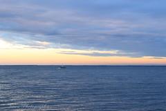 L'heure bleue. (Tinou61) Tags: arcachon bassindarcachon gironde nouvelleaquitaine sudouest océan atlantique paysage nature