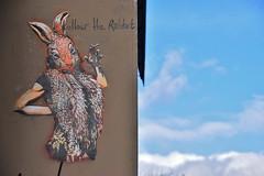 Follow the rabbit (HBA_JIJO) Tags: streetart urban graffiti pochoir stencil paris animal art france artiste artist hbajijo wall mur painting peinture pochoiriste adey lapin rabbit cigarette