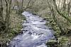From Pool Bridge (me'nthedogs) Tags: poolbridge hornerwater horner exmoor somerset