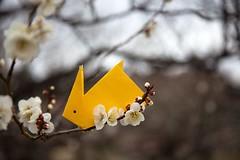 Rabbit and Plum (Ichigo Miyama) Tags: ウサギぎとウメ plum rabbit origami ウメ 梅 flower plant うさぎ 折り紙 おりがみ paper
