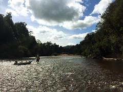 Franklin River. Tasmania.