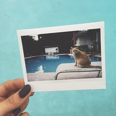 This is 23 // August 13, 2015 (Shannon Manley) Tags: 200 instant fujifilm 365 instax project365 fujifilminstax instax200 instant365 thisis23