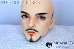 IMG_0453 (Meanae) Tags: beard commission iplehousetedros measbjdsalon faceip