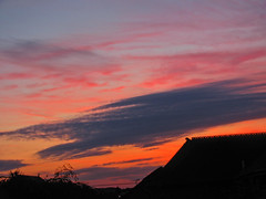 colourful sunset [explored] (carol_malky) Tags: pink blue roof sunset orange tree silhouettes explored