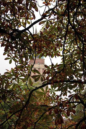 "Der Rathausturm (02) • <a style=""font-size:0.8em;"" href=""http://www.flickr.com/photos/69570948@N04/20877281748/"" target=""_blank"">Auf Flickr ansehen</a>"
