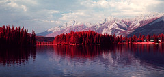 img009 (Photo Taker #9) Tags: infrared orangefilter colorinfraredfilm aerochrome