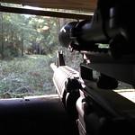 "DIAMOND L hog hunting <a style=""margin-left:10px; font-size:0.8em;"" href=""http://www.flickr.com/photos/125529583@N03/21498565810/"" target=""_blank"">@flickr</a>"