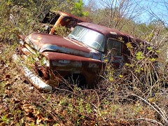 2 panels for the price of 1 (Dave* Seven One) Tags: rot abandoned overgrown junk rust decay rusty forgotten 1950s junkyard salvage gmc decaying patina gmctruck rotted paneltruck