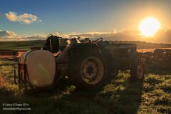 Tractor, Morning. (Colum O'Dwyer) Tags: old morning tractor classic ford sunrise early farming australia tasmania agriculture devonport colum flowerpicking colcum columodwyer