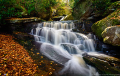 20151011 WV Elakala Falls In The Fall101 (Dan_Girard_Photography) Tags: mountains fall nature water season landscape rocks smooth falls wv flowing silky 2015 elakalafalls dangirardphotography