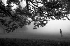 White Walker (TS446Photo) Tags: park camera morning autumn blackandwhite bw cloud white mist black tree art monochrome field fog club 35mm bench landscape mono nikon df country sigma walker dslr essex lonesome bedfords sigmaart nikondf