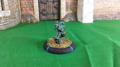 Earthborn Troll Whelp (Eldritch Engines) Tags: miniatures fantasy troll hordes trollbloods whelps
