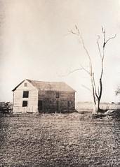 455 - Barn and Lone Tree -  Lith Print (Brad Renken) Tags: blackandwhite film barn 35mm nebraska pentax k1000 kodak tmax farm ne neb lith 3200 bleached redevelop nebr arista redeveloped 5054 slavich unibrom