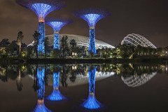 _DSC7472 (kaioyang) Tags: singapore gardensbythebay neon lights biogont235 zeiss biogon 35mm