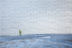 (Svein Skjåk Nordrum) Tags: door blue roof people building scale oslo wall opera exterior perspective marble oslooperahouse