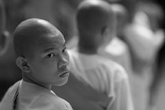 Nuns (feijeriemersma) Tags: myanmar burma birma nun nuns boeddism bhuddism monastery bw black white monochrone girls asia monk monks young religion religious asian line