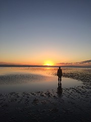 Sunset in Crosby  #Liverpool #Crosby #anthonygormley   #sunset #newyear #statue #anotherplace (chrisefc) Tags: liverpool crosby anthonygormley sunset newyear statue anotherplace