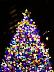 Delphinus (retroSPecktive) Tags: bokeh christmas tree xmas lights