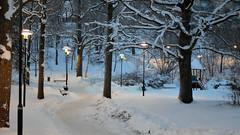 Klippbacken park near Filipstadsbacken (Mister.Marken) Tags: sweden nikon nikond5100 larsboda winter white snow outdoor lamps urbanphotography urban klippbacken filipstadsbacken park