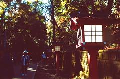 高尾山_17 (Taiwan's Riccardo) Tags: 2016 japan tokyo 135film fujifilmrdpiii transparency color plustek8200i rangefinder 日本 東京 zeissikoncontessa35 tessar fixed 45mmf28 高尾山 八王子 2016tokyovacation