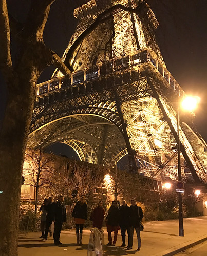 "EPIC Biophotonics Workshop ""Translating Biophotonics Technologies to Clinical Oncology dinner at eiffel tower(32)"