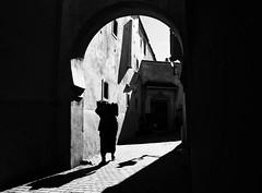 burden (Georgie Pauwels) Tags: street olympus streetphotography morocco burden shadows sunlight loadbearing contours blackandwhite contrasts silhouette outline