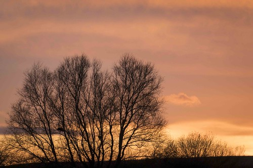 Winter Sunset from the Godmanchester Nature Reserve