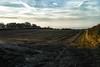 An English Winter (jamesromanl17) Tags: field sky landscape winter clouds cloudscape cloudy england landscapes x3 fields cloud agriculture skies sigma farming cheshire foveon dp2 merrill nature x29