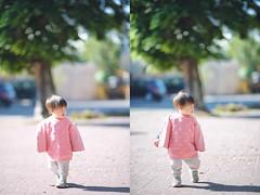 嬰兒時尚 (M.K. Design) Tags: 台灣 埔里 家庭 親子 嬰兒 小孩 遛小孩 散步 球場 淺景深 散景 高動態範圍 自然 人像 尼康 定焦鏡 望遠 taiwan puli family baby infant bokeh nature hdr portrait nikon d800e afs 105mmf14e ed primelens tele