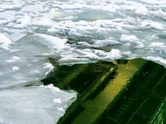 COLONY I Kolónia (krisztian brego) Tags: omd em10 olympus mzuiko digital 45mm f18 budapest liberty bridge szabadság híd danube river folyó ice jég zajlás