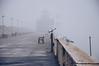 Foggy day in Antwerp (*M.*) Tags: foggy antwerp belgium seagull fog mist misty vanishingpoint