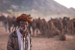 Herder | Brown Turban (Karunyaraj) Tags: pusharfair pushkar camelherder camel camelfair camelfair2016 bokeh silkybokeh potrait herder rajasthan desert cwc cwc561 chennaiweekendclickers nikond610 d610 nikon24120 fx fullframe