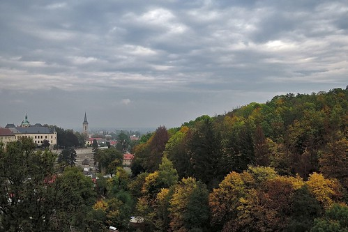 Лес и старый город. Кутна-Гора, Чехия