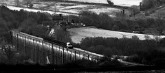 Black and white steel (Peter Leigh50) Tags: harringworth rutland northamptonshire welland viaduct steel train ews dbs class 66 shed mono monochrome blackandwhite blackwhite trees trains