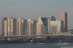 Rotterdam, Citadis en skyline (Hans Westerink) Tags: ret erasmusbrug skyline city cbd maas rivier river hanswesterink trolley canon eos 450d