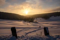Winternachmittag (Deutscher Wetterdienst (DWD)) Tags: winter winterlandscape winterlandschaft winterwonderland schnee snow 2017 kälte could sonnenuntergang sunset thüringerwald neuhausamrennweg