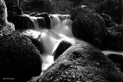 Petit torrent (jpto_55) Tags: noiretblanc eau cascade torrent ruisseau ruisseaudelabuge siguer ariège france xe1 fuji fujifilm fujixf1855mmf284r flickrunitedaward ngc