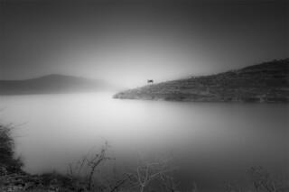 loneliness at Halfeti..........