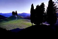 I quattro cipressi (giobertaskin) Tags: mugnano sassomarconi appennini show spettatori doubleexposure sera evening cipresso four quattro
