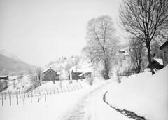 Hagen/Hagvik in Førde, ca. 1905-1930. (Fylkesarkivet i Sogn og Fjordane) Tags: norway noreg norge sognogfjordane sunnfjord førde olaifauske hagen hagvik farm cottersfarm winter landscape snow