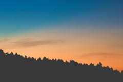 the beauty of a new start (life-and-camera) Tags: life morning blue trees light shadow summer sky cloud naturaleza sun sunlight mountain black france mountains texture nature colors sunshine silhouette yellow backlight clouds forest sunrise skyscape landscape outdoors nationalpark focus colorful forrest outdoor horizon bluesky paisaje adventure ridge explore amanecer cielo nubes gradient land montaña cloudscape nube pyrenees montañas pirineo pirineu airelibre naturalpark pyreneesorientales lasdesbouillouses