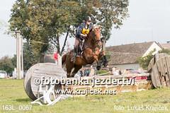 163L_0067 (Lukas Krajicek) Tags: military czechrepublic cz kon koně vysočina vysoina southbohemianregion blažejov dvoreček všestrannost dvoreek