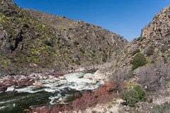 The wild Côa river