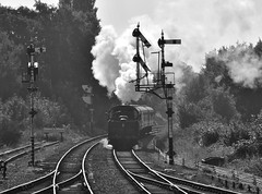 Great Central Railway Swithland Leicestershire 2nd October 2015 (loose_grip_99) Tags: uk railroad england train blackwhite october noiretblanc leicestershire engine rail railway trains steam transportation locomotive railways gala preservation midlands 260 2100 lms greatcentral eastmidlands britishrailways 2015 gcr 9f ivatt uksteam 46521 2mt 92214 gassteam