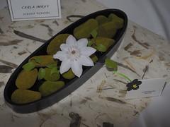 """Flower on mossy stones by Carla Imray """"Ichiyo School"""". (nano.maus) Tags: lauritzengardens japaneseflowerarrangement omahabotanicalsociety japaneseambiencefestival"""