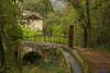 IMG_1295 (Matteo Scotty) Tags: foglie alberi ponte molino di acqua sottobosco vede cison valmarino