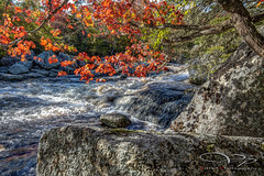 West Pennant River (Vistan Photography) Tags: canada water river outdoors waterfall stream novascotia rapids hdr geolocation westpennant geo:country=canada camera:make=canon exif:make=canon exif:focallength=24mm exif:aperture=11 geo:state=novascotia exif:model=canoneos6d camera:model=canoneos6d exif:isospeed=100 exif:lens=ef1635mmf4lisusm geo:city=westpennant geo:lon=63628733333333 geo:lat=44476746666667