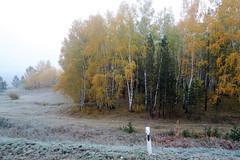RU2011  (S.K. LO) Tags: russia easternsiberia irkutskregion
